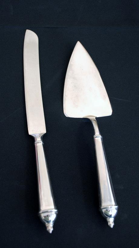 Where to find 2 PIECE CONTEMPORARY CAKE KNIFE LIFTER in Murfreesboro
