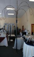 Rental store for WEEPING WILLOW TREE 9 4  X 7 5 in Murfreesboro TN