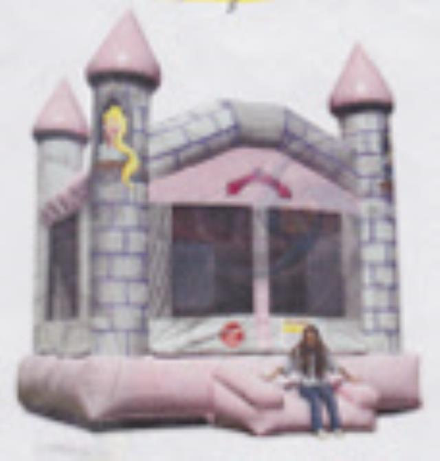 Where to find CASTLE PRINCESS MOONWALK  15 FT in Murfreesboro